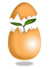New life from egg - Stock Illustration