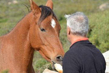 L'uomo e il cavallo