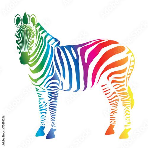 Zebra color palette - 72476056