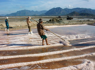 Asian farmer, salt plantation, Vietnamese salina