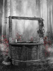 Czarno-biała sceneria ze starą studnią w lesie