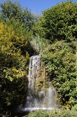 Cascade dans le parc de la Vallée des singes
