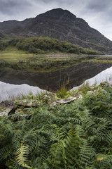 Landscape image of mountain reflected in still lake on Summer mo