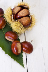 natural chestnuts on white wood, still life