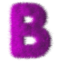 Purple shag B letter isolated on white background