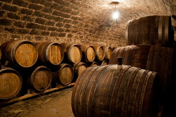 Barrels in a hungarian wine cellar