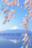 Fototapety 河口湖と富士山