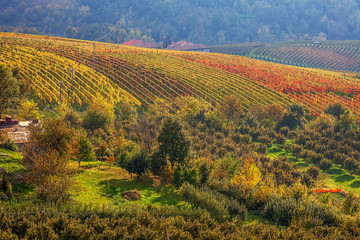 Autumnal countryside view in Italy.