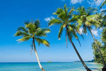 Idyllic Island Relaxation In Peace