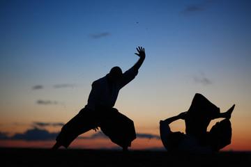 Martial art masters