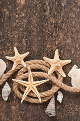 seashell and rope on old wooden background
