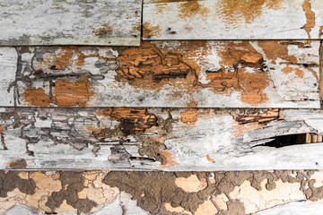Old wooden wall surface decay and termites damaged traces.