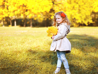Autumn photo beautiful little girl with yellow maple leafs in th