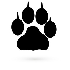 Black Icon animal traces. Raster.