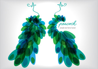 vector illustration of two peacocks