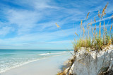 Fototapety Beautiful Florida Coastline
