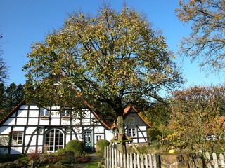 Fachwerkhaus mit großem Garten in Lipperreihe bei Oerlinghausen