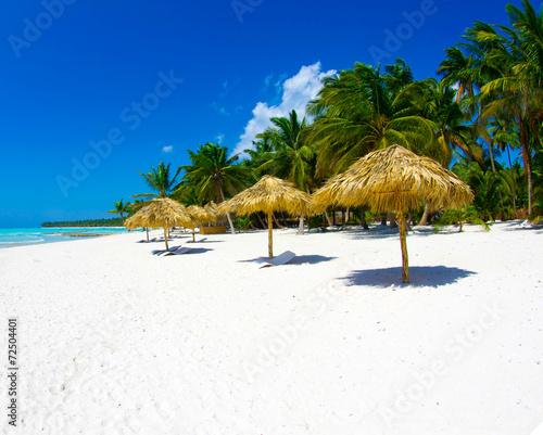 Foto op Plexiglas Palm boom tropical beach
