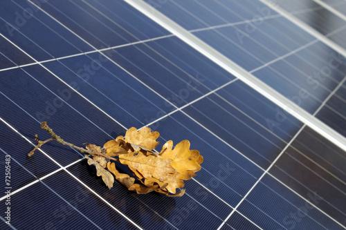 Solarmodule im Herbst - 72505483