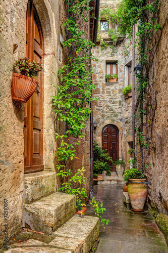 Alley in old town Pitigliano Tuscany Italy Poster