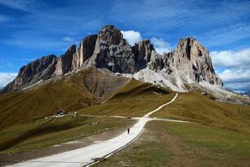 Sassolungo - Langkofel, Dolomites, Italy