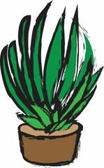 doodle green aloe