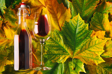 Homemade Red Wine on Autumn leafs