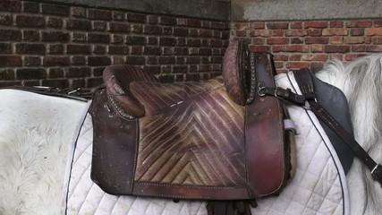 Saddle, Horses, Farm Animals