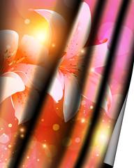 Floral curtain.