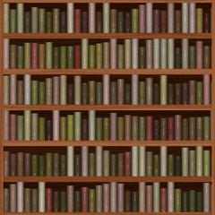 texture of bookshelf