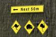 Achtung Kängurus, Wombats und Emus kreuzen
