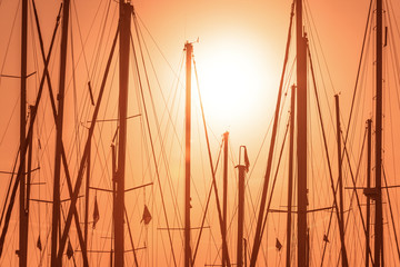 Lonely masts
