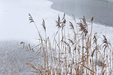 Ice on lake