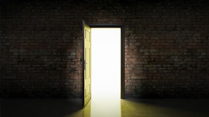 door with brick wall