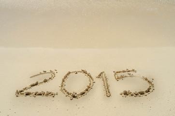 Año nuevo 2015 en la playa 3