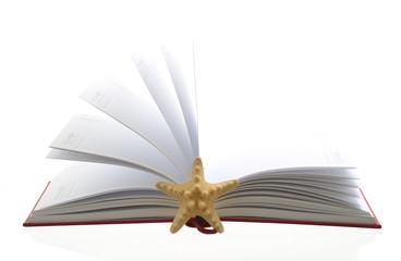 Sestern Tagebuch