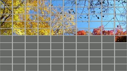 100個のモニター画面に映し出された秋