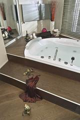 interior view of a modenr bathroom with bathtub