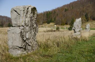 matic poljana stones