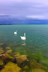 coming storm over the lake constance
