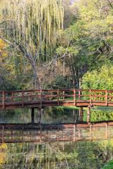 Wooden bridge over mirrored pond in the autumn park
