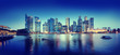 Cityscape Singapore Panoramic Night Concepts