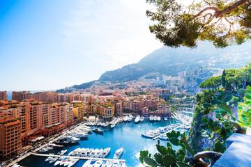 Marina in Monaco city