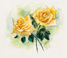 Two yellow roses.