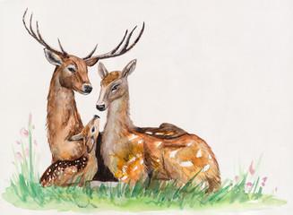 Family of deer. Hand-drawing watercolor.