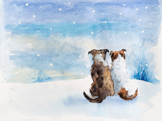 Two dog. Dog`s meeting. Russian winter.
