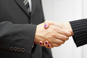 businesswoman and businessman shakeing hands. Successful busines