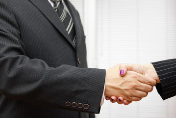 Handshake of business partners, man and woman in the office