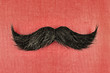 Retro styled image of a black curly moustache