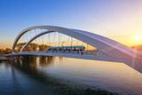 Tramway on the bridge at sunset - 72543447